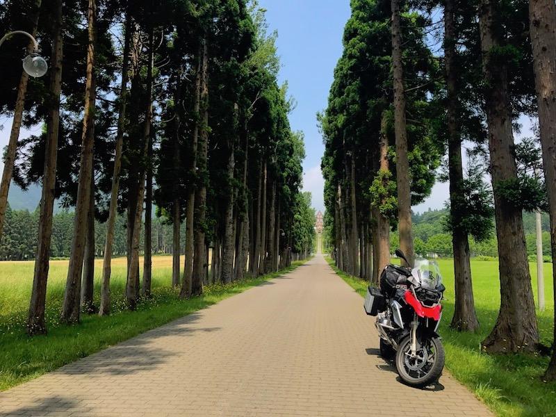 修道院への並木道